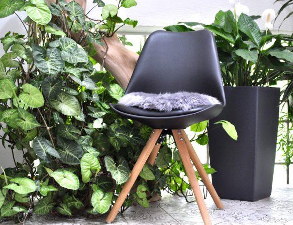 5. Sessel